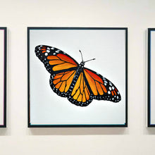 Load image into Gallery viewer, Mini Series - Butterfly 1c