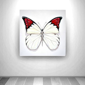 Mini Series - Butterfly 1a