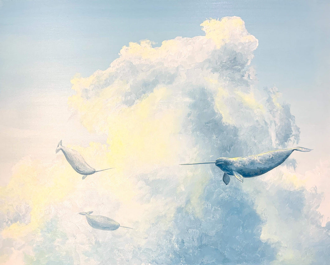 -Cloud Series - Narwhals