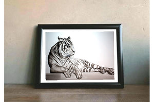 Animal Series- Tiger - Black on White