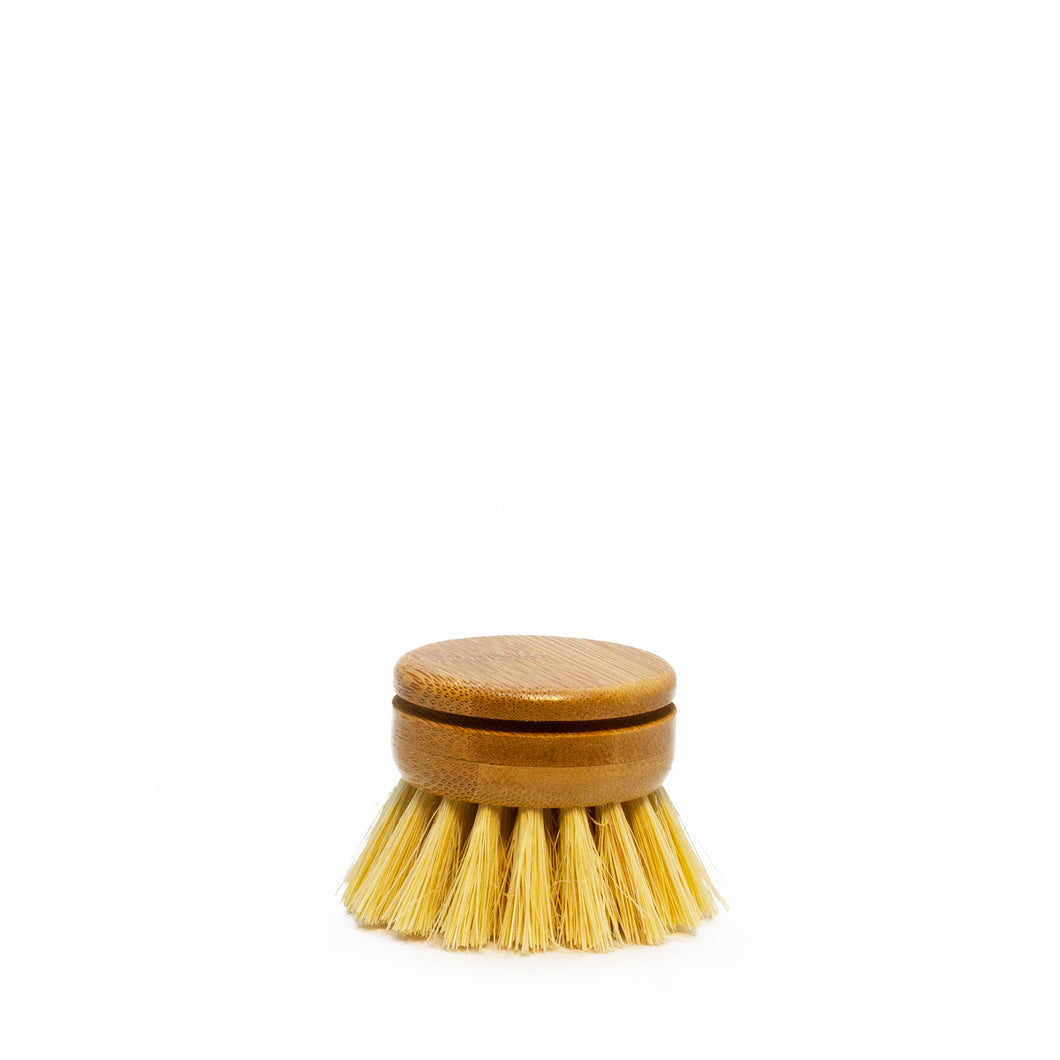 Replacement Head For Plastic-Free Wood Dish Brush