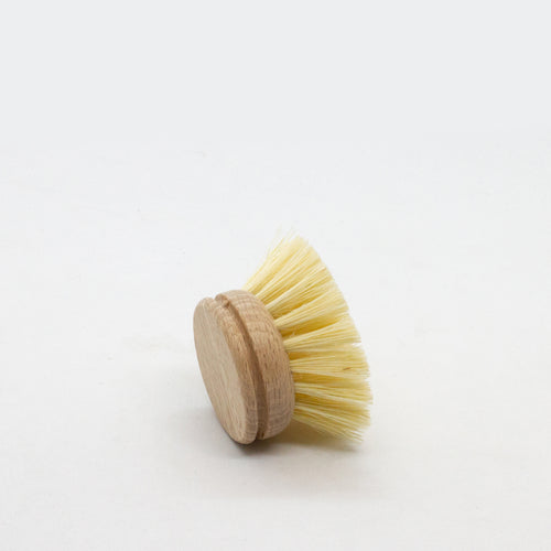 Replacement Head For Plastic-Free Beechwood Dish Brush