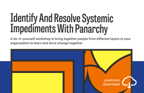 Do-It-Yourself Workshop: Identify And Resolve Systemic Impediments With Panarchy