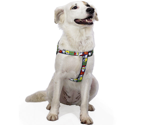 PEITORAL SNOOPY JOE COOL Zooz Pets BRA
