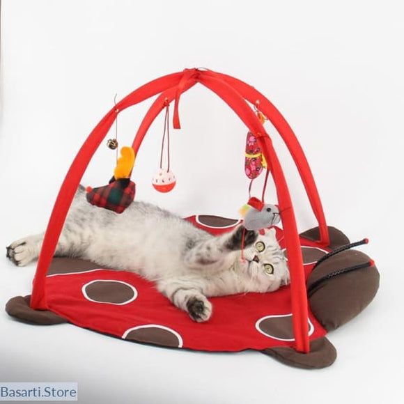 Cat Bed and Toy Mobile, - Basarti.Store