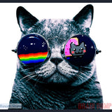 Cool Cat With Sunglasses, Andy Prokh's famous photograph, 200000783- Basarti.Store