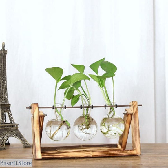 Creative Hydroponic Plant Vase with Wooden Frame, Hydroponic Plant Vase- Basarti.Store
