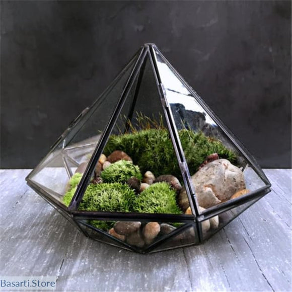 Diamond Shape Glass Terrarium - Diamond Shape Glass Terrarium