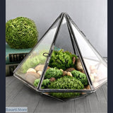Diamond Shape Glass Terrarium, Diamond Shape Glass Terrarium- Basarti.Store