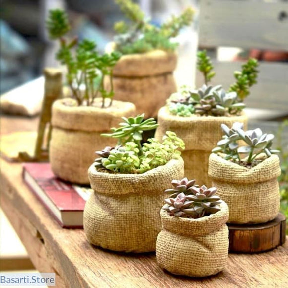 Linen Bag Shaped Ceramic Flower Pots. - Linen Bag Shaped Ceramic Flower Pots.