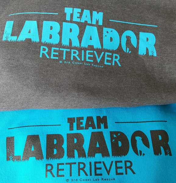 Team Labrador T-Shirt (Heather)