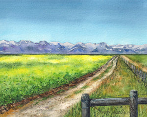 Lush Fields of Teton County