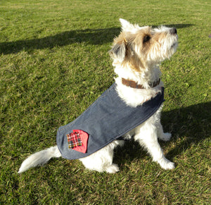 Upcycled Dog coat made of jeans and decorated with Tartan patches