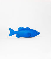Blue Spray Painted Fish