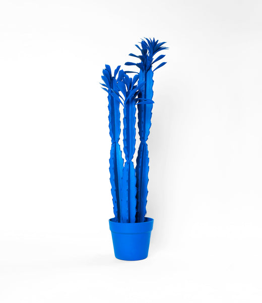 Blue Spray Painted Large Plant