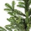 Noble Fir British Pot Grown Real Christmas Tree