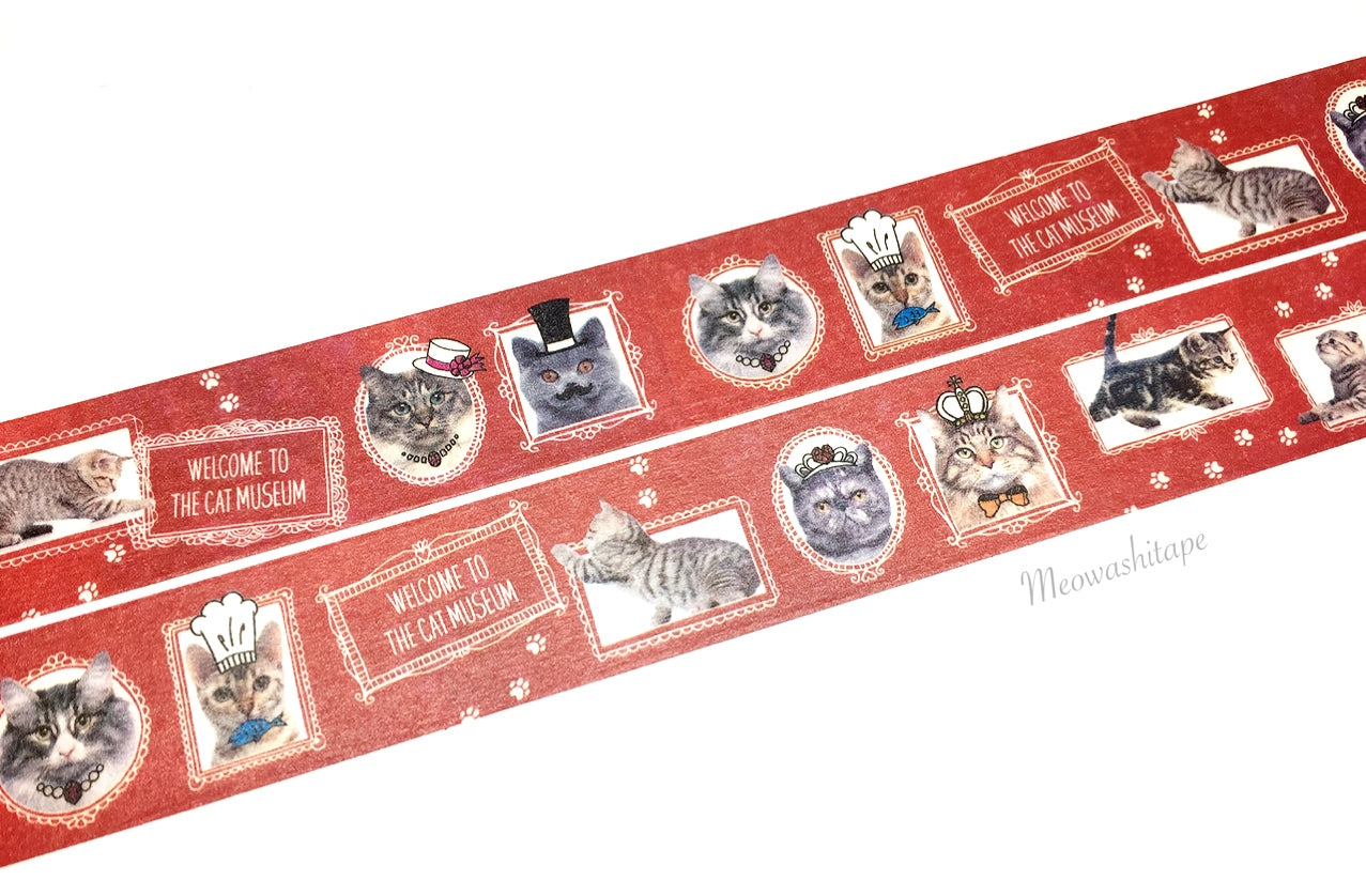 Bande - Red cat museum washi tape BDA048