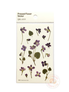 Appree pressed flower sticker - Manchurian violet APS-011