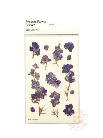 Appree pressed flower sticker - Larkspur APS-012