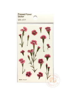 Appree pressed flower sticker - China pink APS-013