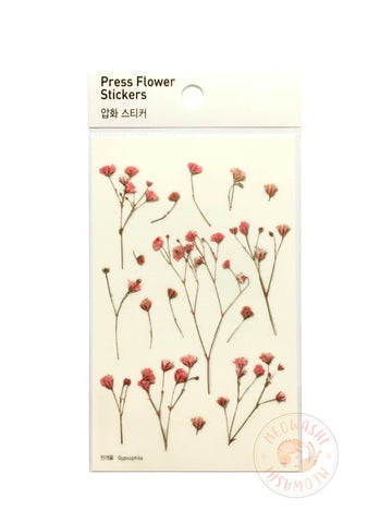 Appree pressed flower sticker - Gypsophila APS-001