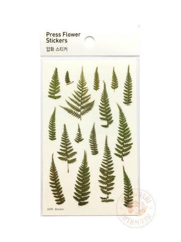 Appree pressed flower sticker - Bracken APS-003