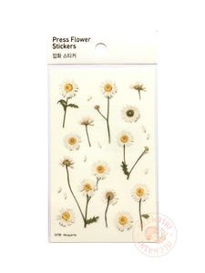 Appree pressed flower sticker - Marguerite (Daisy) APS-004