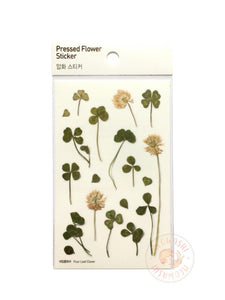 Appree pressed flower sticker - Four leaf clover APS-006