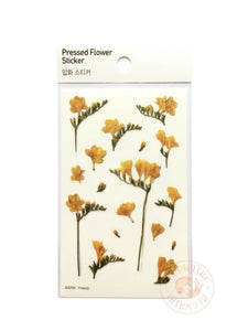 Appree pressed flower sticker - Freesia APS-007