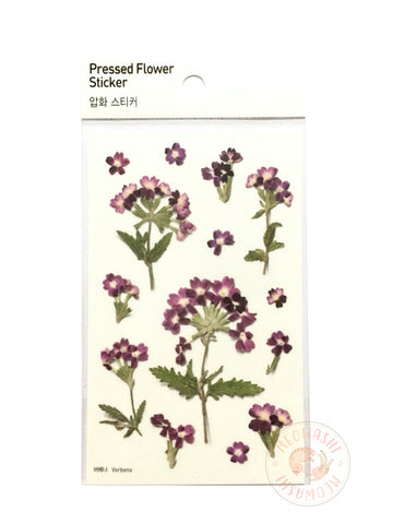 Appree pressed flower sticker - Verbena APS-017