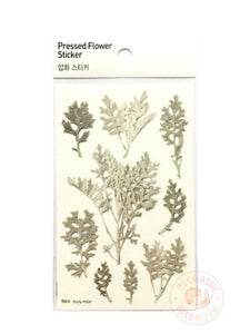 Appree pressed flower sticker - Dusty Miller APS-018