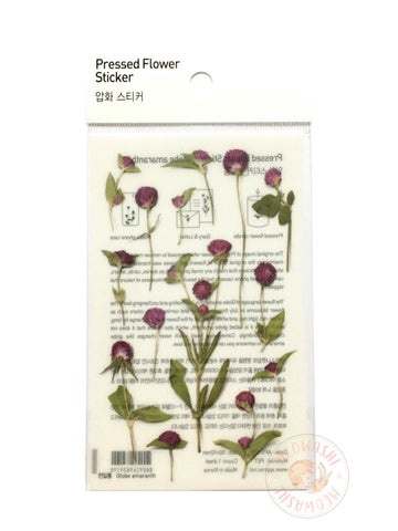 Appree pressed flower sticker - Globe Amaranth APS-019
