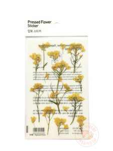 Appree pressed flower sticker - Rapeseed flower APS-020