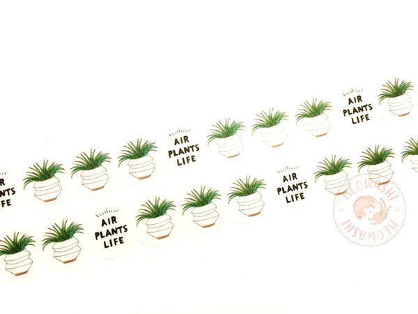 Round Top x Hirano Toshiyuki - Air plants washi tape HT-MK-013