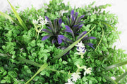 Greenery Wall - Box Hedge, Grass Shoots & Purple, Pink, White Flowers Close Up 2