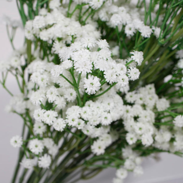 Baby Breath Bouquet Premium - White (60cm) Close A