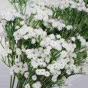Baby Breath Bouquet Premium - White (60cm) Close D