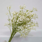 Baby Breath Bouquet Filler Stems - White (60cm) Close A