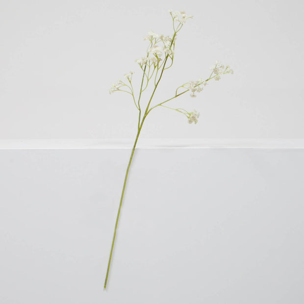 Baby Breath Bouquet Filler Stems - White (60cm) Single Stem