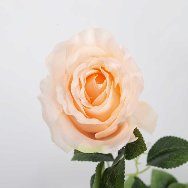 Peach Rose (9cm) Artificial Flower Vine - 1.6m