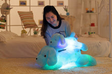 Load image into Gallery viewer, Light Up Plush Doggy LED Pillow (50 cm / 80cm)  Light Up Pillow zelnaga.myshopify.com AllAboutBB AllAboutBB