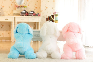 Light Up Plush Doggy LED Pillow (50 cm / 80cm)  Light Up Pillow zelnaga.myshopify.com AllAboutBB AllAboutBB