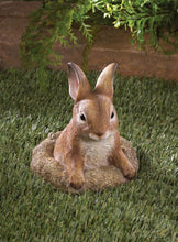 Load image into Gallery viewer, Bunny Garden Accent