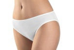 Hanro Cotton Seamless Hi Cut Brief Panty