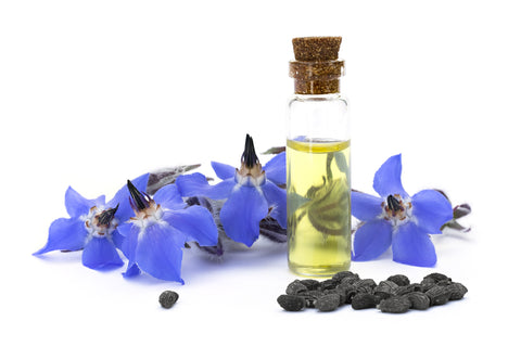 Borage Oil | Pure Life Science