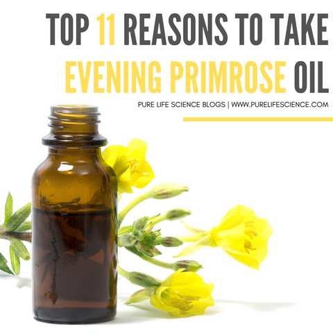 Top 11 Reasons to Take Evening Primrose Oil Blog | Pure Life Science