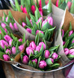 A beautiful hand tied bouquet of pink tulips with eucalyptus foliage. Presented in an aqua-pack and gift bag.