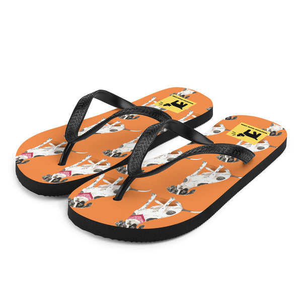 Flip-Flops mit schönem English-Pointer-Motiv (orange, Gr. 36-44) - wauwau-wow.com