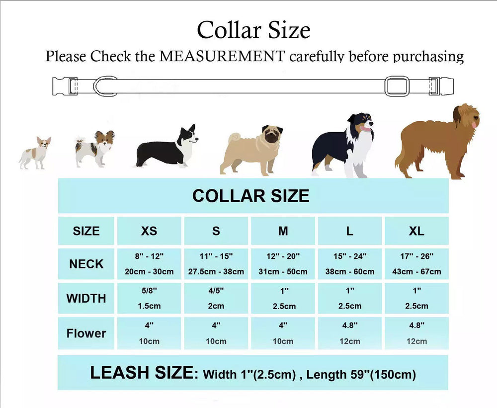 Personalized Dog Collar, Dog Collar and lead, Large Dog Collar, Unique Dog Collar, Stylish Dog Collar,Girly Dog Collar,Puppy Collar & leash