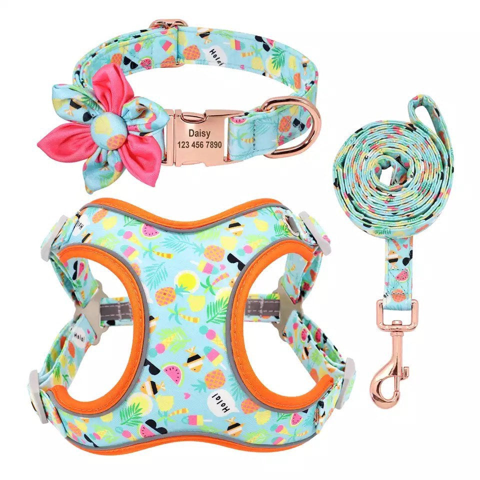 Personalized Dog Harness Set, Floral dog harness and leash,puppy harness with leash, Tropical Print dog harness set,dog harness vest